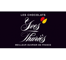 normal_yves-thuries_logo.png
