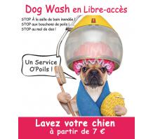 zph-fbk-dogwash.png